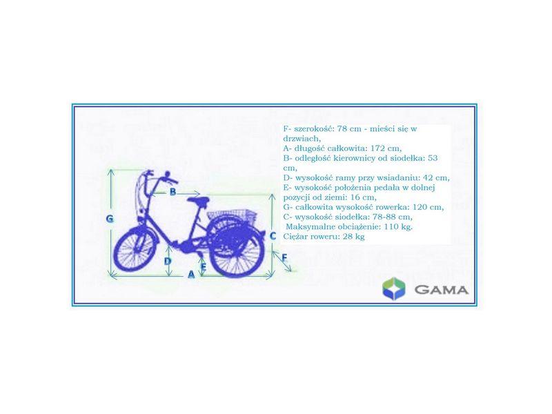 Elektryczny Rower Trójkołowy Rehtime Standard